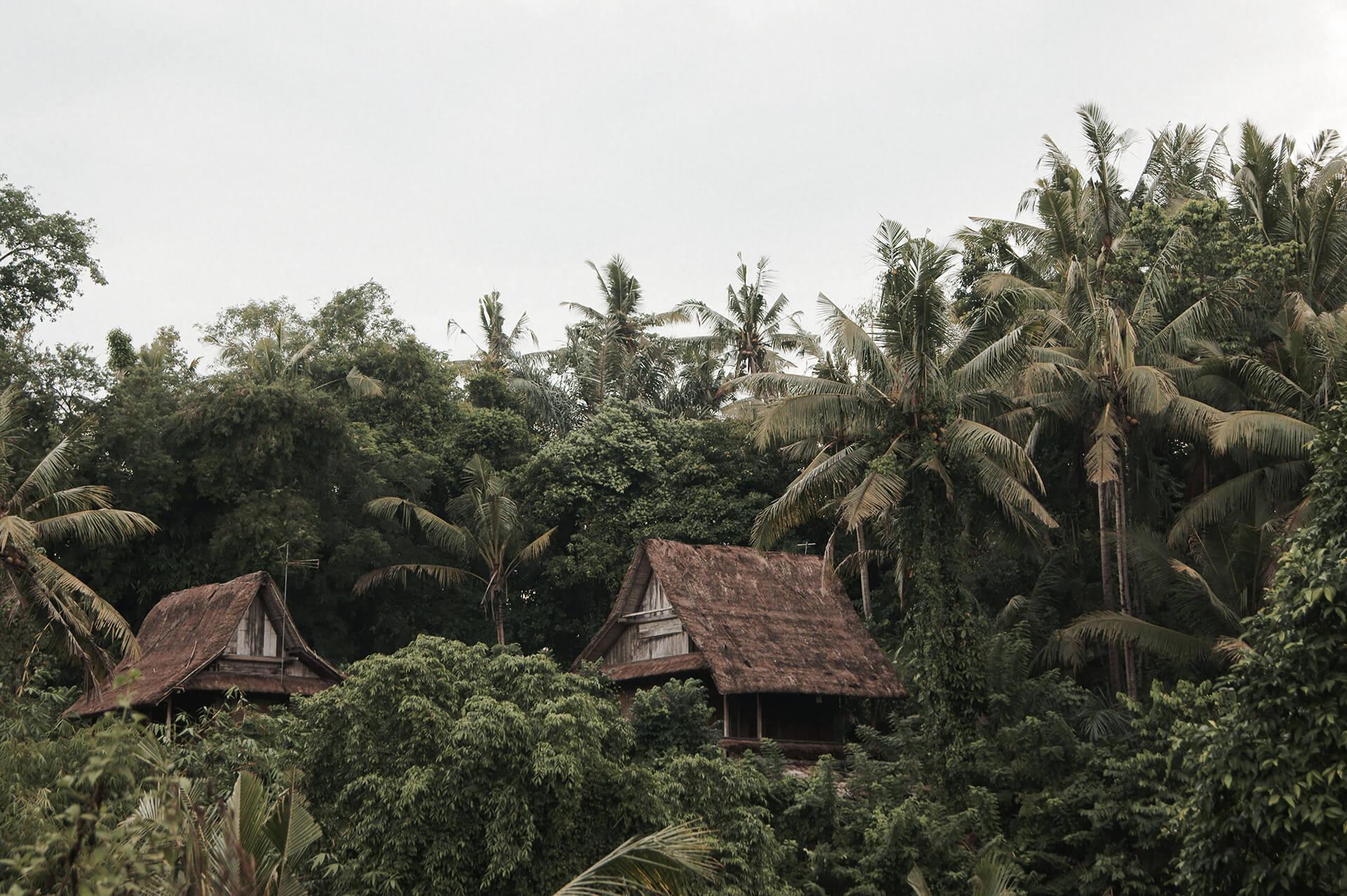 Traditional Balinese houses hanging off Ubud, Bali