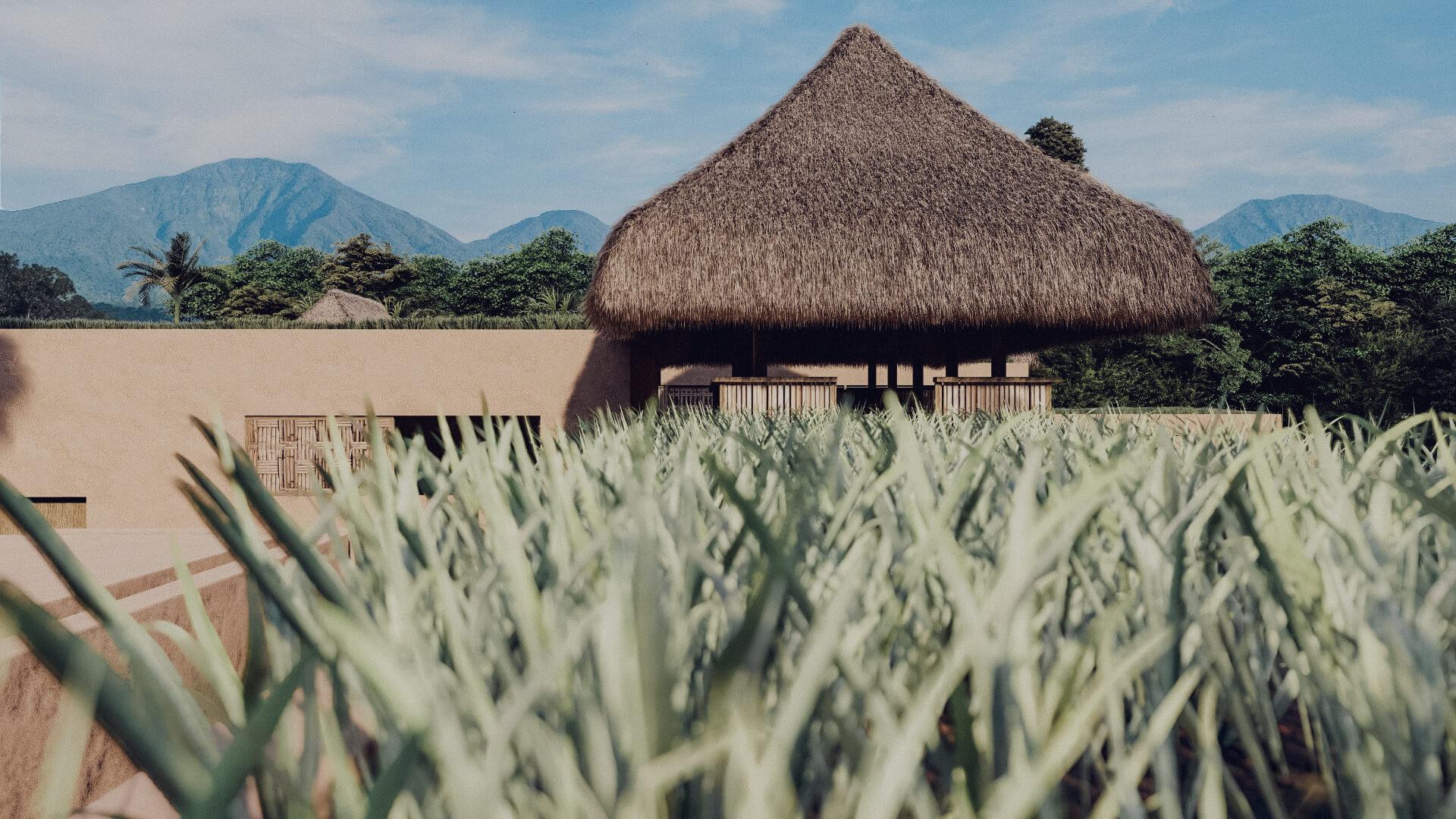Rumah Besar Sembalun Lombok Architecture Roof Top