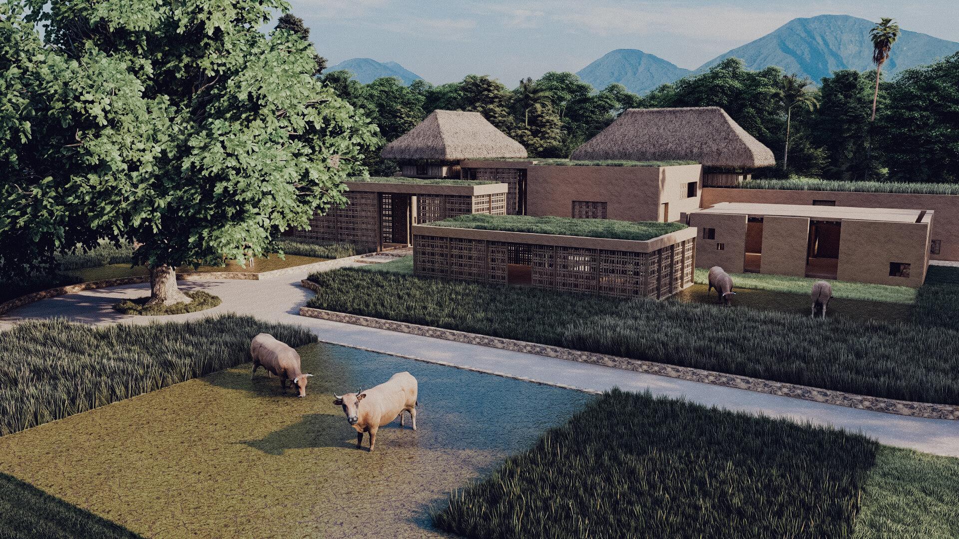 Rumah Besar Sembalun Lombok Architecture Aerial View